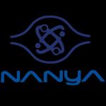 Minder omzet voor Nanya Technology